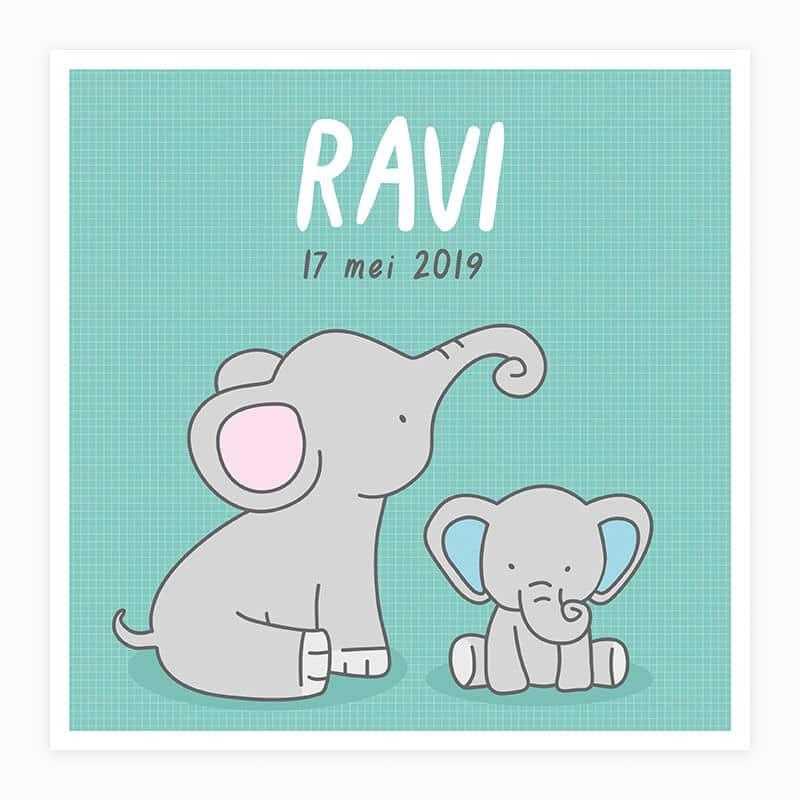 Geboortekaartje ontwerp Ravi