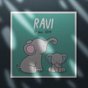 geboortekaartje Ravi